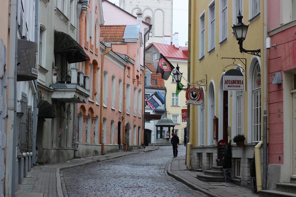 wiki_estonia.jpg